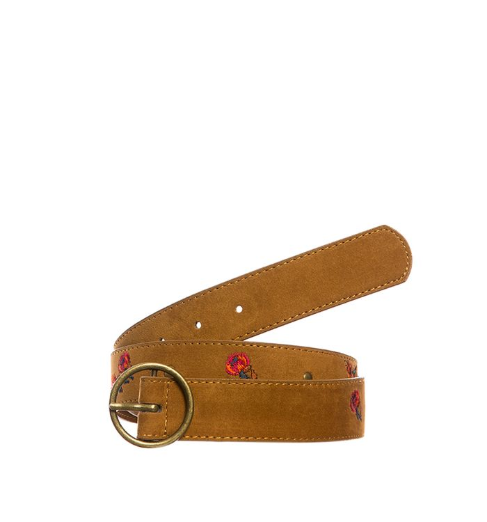 cinturones-tierra-s442012-1
